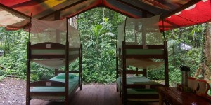 Las Piedras Amazon Center Platform Bunk Beds Rainforest