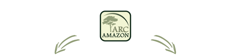 ARC-Amazon-Project-Graphic-Part1