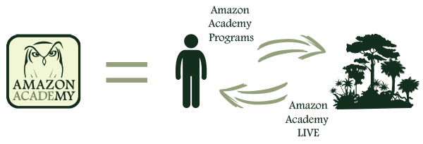 Amazon-Academy-Graphic
