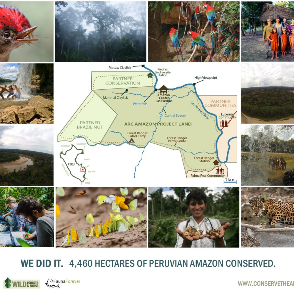 ANNOUNCEMENT: New Conservation Area Created in the Peruvian Amazon