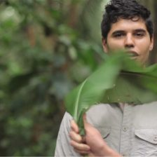 Leafcutter Ants (ARCtv S01 Ep 08)