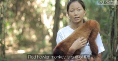 Howler Monkeys (ARCtv Se01 Ep06)